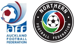 2019 AFF/NFF U15 Metro/Conference